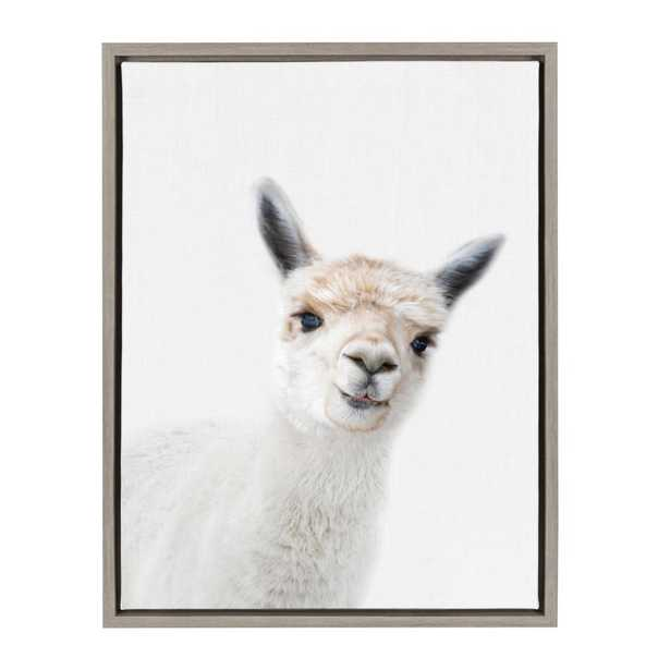 "Sylvie ""Animal Studio Alpaca"" by Amy Peterson Framed Canvas Wall Art, Gray - Home Depot"