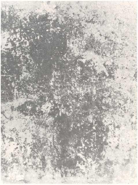 """Aberdine ABE-8013 Rug - 9'3"""" x 12'3"""" - Neva Home"""