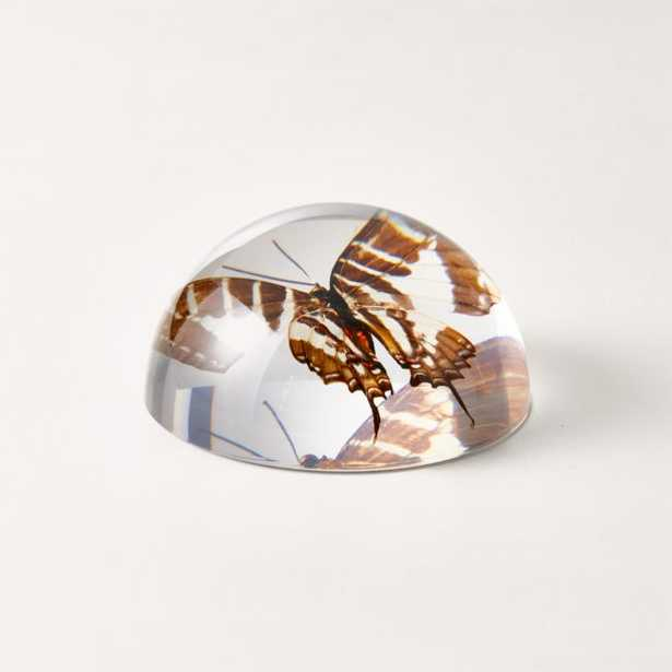 Volare Paperweight - CB2