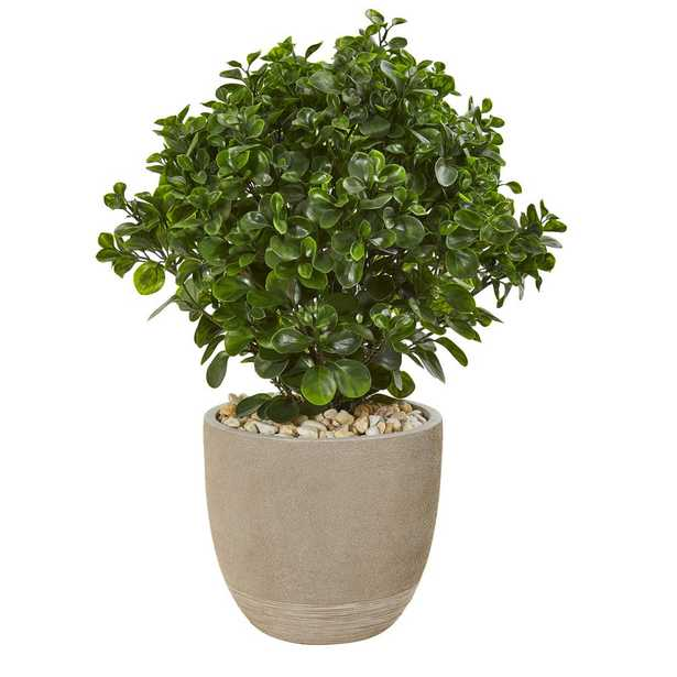 Nearly Natural Indoor/Outdoor 30 in. Peperomia Artificial Plant in Sand Stone Planter UV Resistant - Home Depot