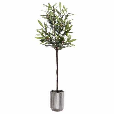 Faux Olive Potted Tree - Wayfair