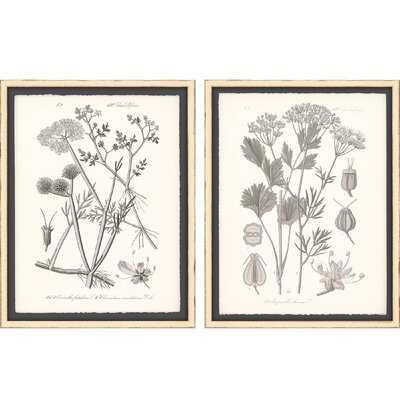 'Gray Botanicals I' - 2 Piece Picture Frame Graphic Art Set on Paper - Wayfair