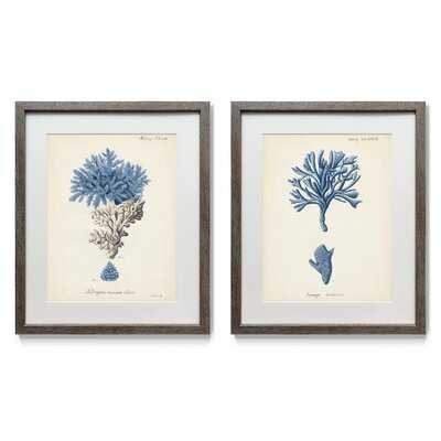 Antique Coral in Navy III - 2 Piece Picture Frame Painting Print Set on Paper - Wayfair