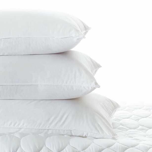 "Pine Cone Hill Mantra Down Alternative Cotton Lumbar Pillow Insert Size: 20"" x 26"" - Perigold"