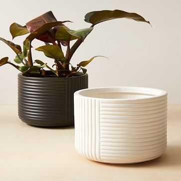Cecilia Indoor/Outdoor Tabletop Planters, White&Black, Set of 2 - West Elm
