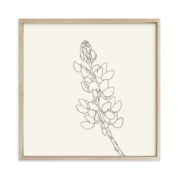 Lupine Art Print - Minted