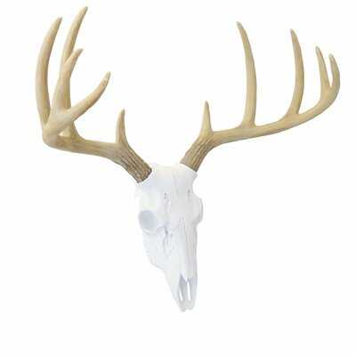 Faux Taxidermy Mini Deer Skull Wall Décor - AllModern