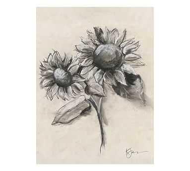 Charcoal Sunflower with Stem Unframed Art Insert - Pottery Barn