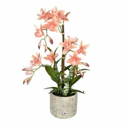 Artificial Cycnoches Plant in Pot - Wayfair