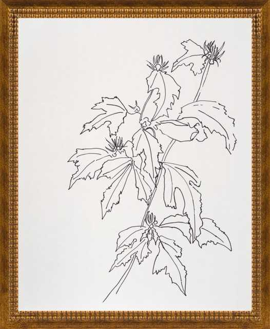 Leaves Rose of Sharon by Casey Chalem Anderson for Artfully Walls - Artfully Walls