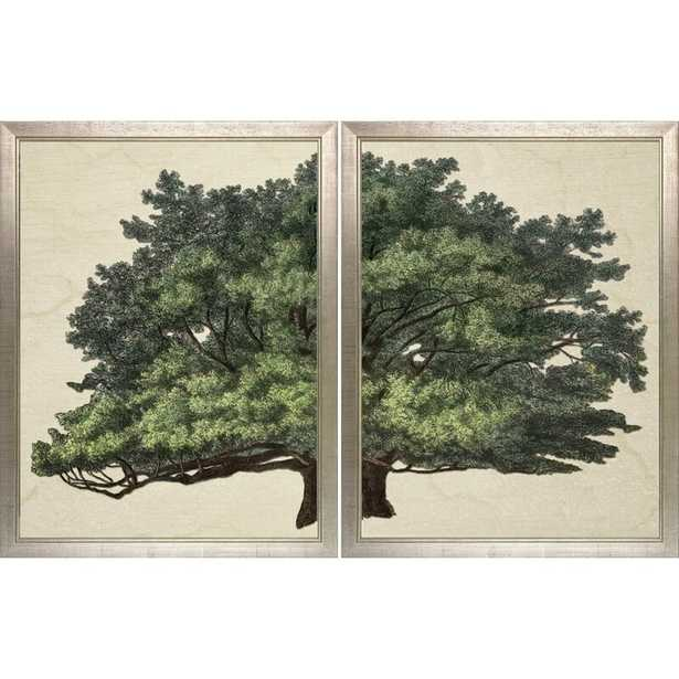 Strutt Tree Duo by Jacob George Strutt Framed Painting Print Frame Color: Textured Antique Silver Finish - Perigold