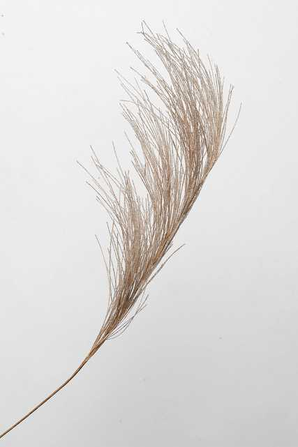 Faux Grass Plume - Anthropologie