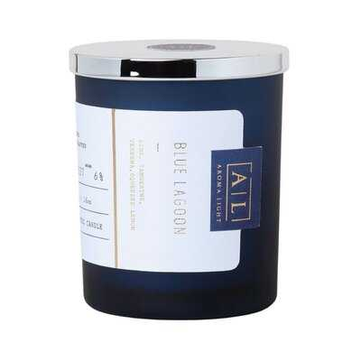 Handmade Blue Lagoon Scented Jar Candle - Wayfair