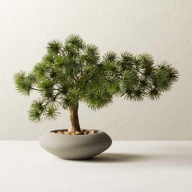 "Potted Faux Japanese Bonsai 10.5"" - CB2"