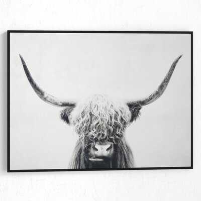 'Pancho' - Picture Frame Graphic Art Print on Wrapped Canvas - Wayfair