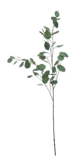 "54"" Faux Eucalyptus Branch - Nomad Home"