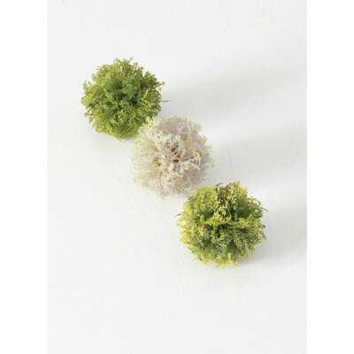 3-Piece Maryalice Moss Box Vase Filler Set - Wayfair