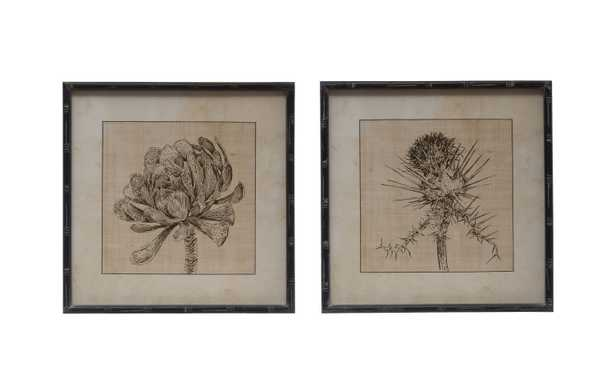 Botanical Sketches Wall Décor in Fir Wood Frames (Set of 2 Styles) - Nomad Home