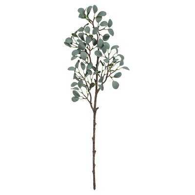 Eucalyptus Spray - Birch Lane