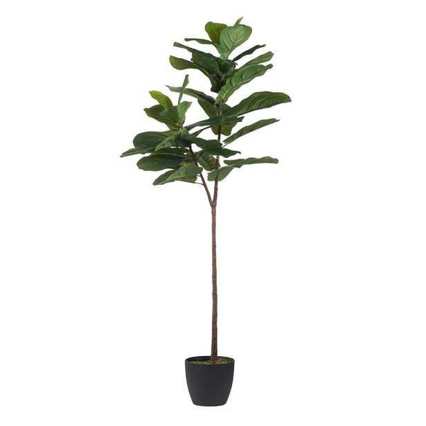 Fiddle Leaf Green Fig Tree - Home Depot