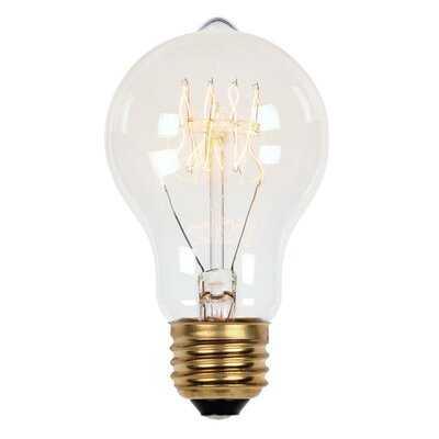 A19 Incandescent, Light Bulb, Soft White (2450K) E26/Medium (Standard) Base - Birch Lane
