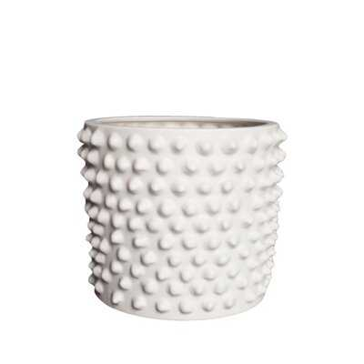 Cloudy 1-Piece Ceramic Pot Planter - AllModern