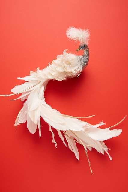 White Peacock Ornament - Anthropologie