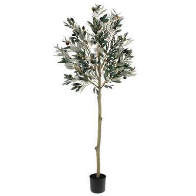 50'' Artificial Olive Tree in Pot Liner - Wayfair