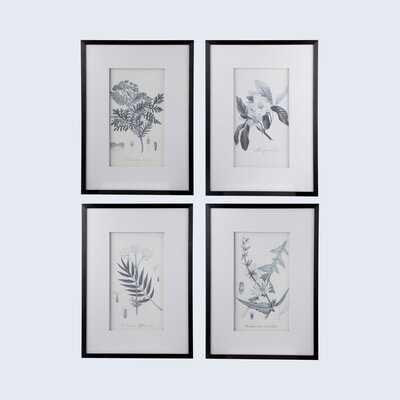 'Botanical' - 4 Piece Picture Frame Print Set on Paper - Wayfair
