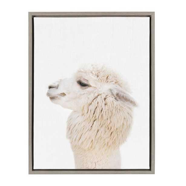 "Sylvie ""Animal Studio Alpaca Profile"" by Amy Peterson Framed Canvas Wall Art, Gray - Home Depot"