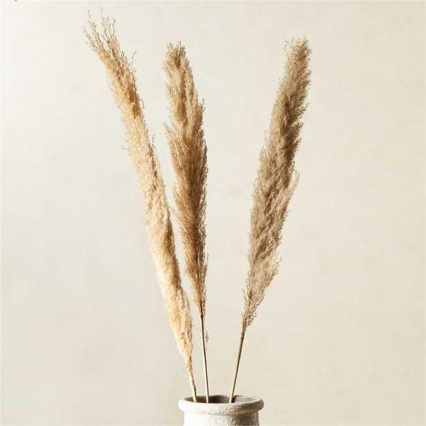 Feather Grass Stem Set of 3 - CB2