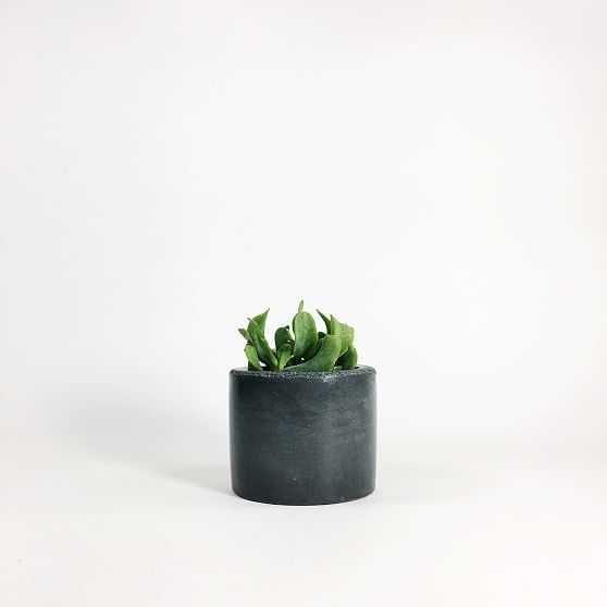SETTLEWELL Concrete Vase, Dark Gray - West Elm