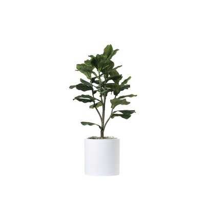 "42"" Artificial Fiddle Leaf Fig Tree in Planter - Wayfair"