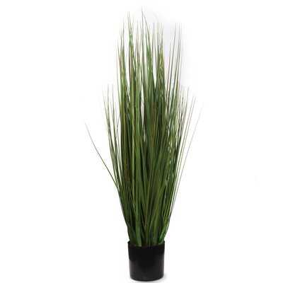 """Artificial Grass Bush In Black Pot 24"""" Silk Fake Grass House Plant Indoor Outdoor Easily Add To More Ornate Container Home Office Party - Wayfair"""