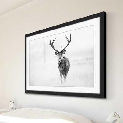 Elk Stare' Framed Photographic Print on Paper - AllModern