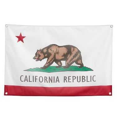 State Pride Flag, California, 36x24 - Pottery Barn Teen