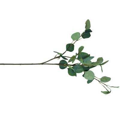 "6 - Piece 26"" Artificial Eucalyptus Branch Set - Wayfair"