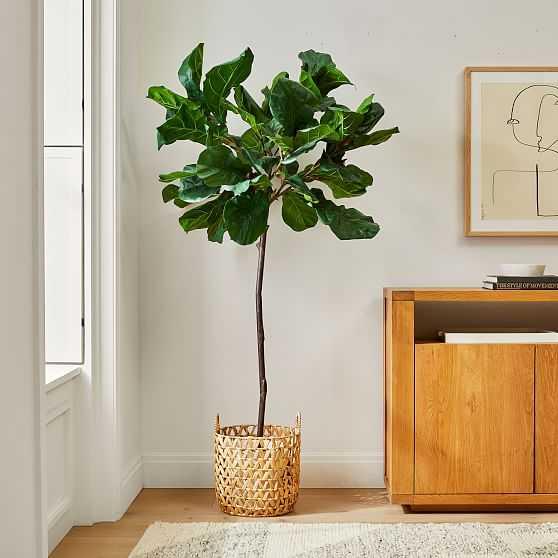Faux 7' Fiddle Leaf Fig & Medium Open Weave Zig Zag Basket Planter Set - West Elm