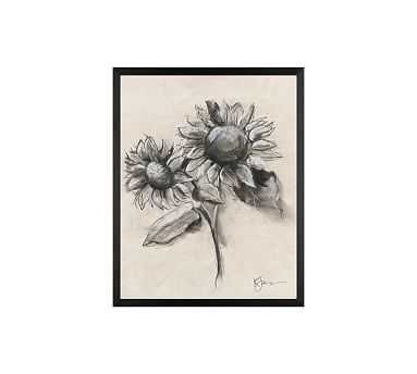"""Charcoal Sunflower Sketch, Sunflower with Stem, 16"""" x 20"""" Wood Gallery, Black, No Mat - Pottery Barn"""