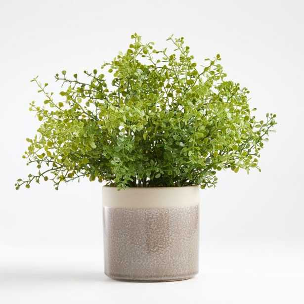 Artificial Potted Greenery - Crate and Barrel