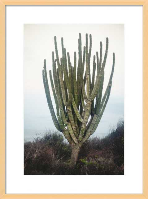 Cactus by Whitney Arostegui for Artfully Walls - Artfully Walls