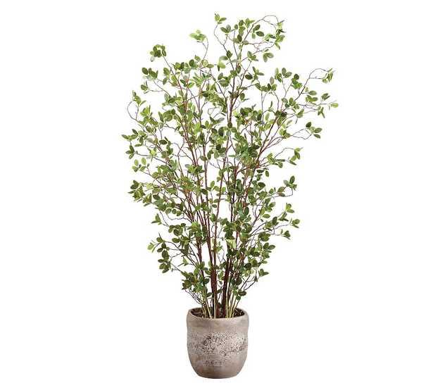 "Faux Mini Leaf In Cement Planter, 60"" - Pottery Barn"