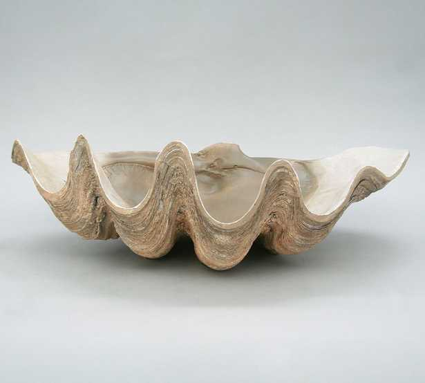 Fossilized Clam Decorative Object - Pottery Barn