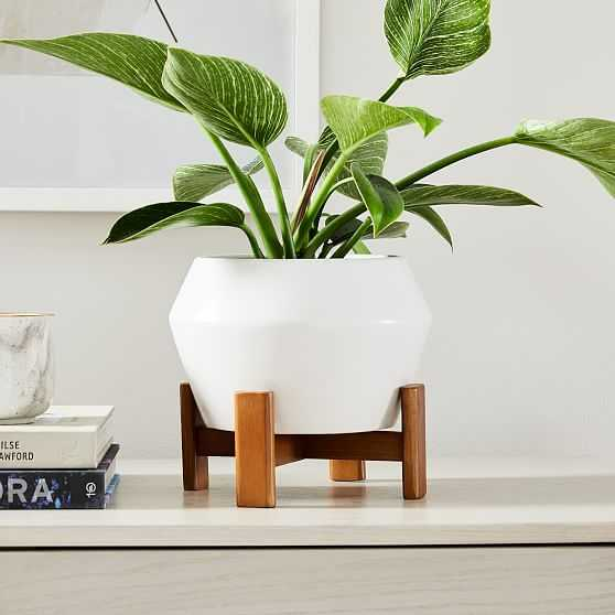 Ilya Tabletop Planter, Small, White, 9in - West Elm