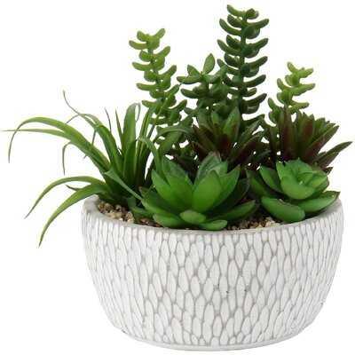 Artificial Succulent, Fake Succulent Plants In Cement Basin Pot Mini Assorted Green Faux Succulent Plant Potted For Home Office Living Room Table Desk Plants Decorations - Wayfair