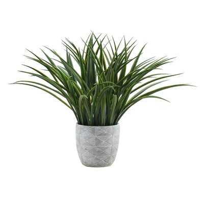 11.75'' Artificial Reed Plant in Pot - Wayfair