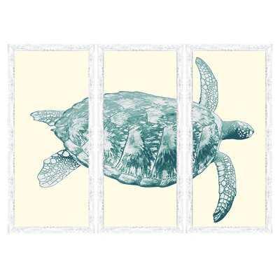 'Sea Turtle' - 3 Piece Picture Frame Graphic Art Print Set on Paper - Wayfair