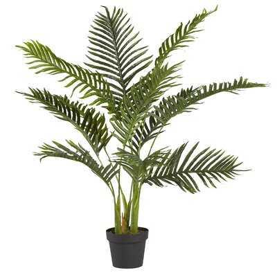 Areca Palm Plant in Pot Liner - Wayfair
