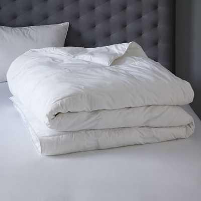 Euro Pillow Insert- Premium - West Elm