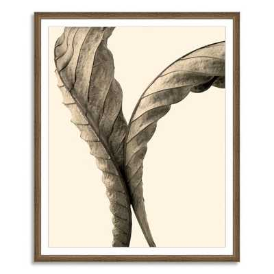 Offset for west elm Print - Autumn Chestnut by Jeff Friesen - Large, Mat (Framed) - West Elm